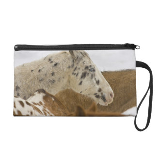 Big Horn Mountains, Horses in The Snow Wristlet