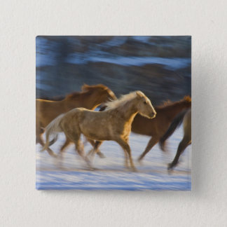 Big Horn Mountains, Horses running in the snow 2 Button