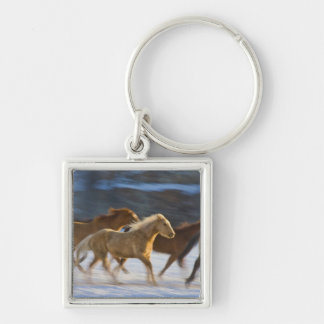 Big Horn Mountains, Horses running in the snow 2 Keychain