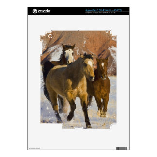 Big Horn Mountains, Horses running in the snow 3 iPad 3 Skin