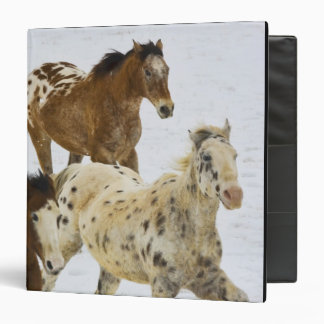 Big Horn Mountains, Horses running in the snow 4 Binder