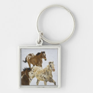 Big Horn Mountains, Horses running in the snow 4 Keychain