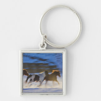 Big Horn Mountains, Horses Running in the Snow Keychain