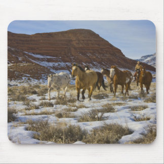 Big Horn Mountains, Horses Running in The Snow Mouse Pad
