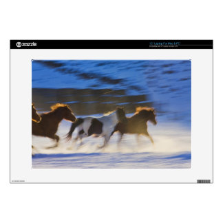 Big Horn Mountains, Horses Running in the Snow Skin For Laptop