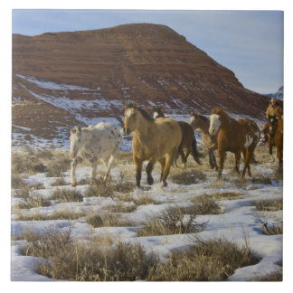 Big Horn Mountains, Horses Running in The Snow Tile