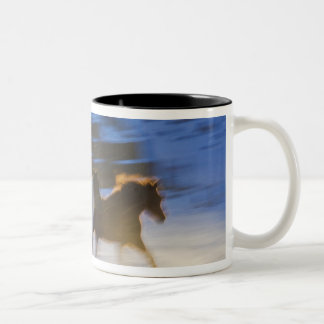 Big Horn Mountains, Horses Running in the Snow Two-Tone Coffee Mug