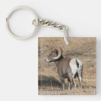 Big Horn Ram Add Photo Acrylic Keychain