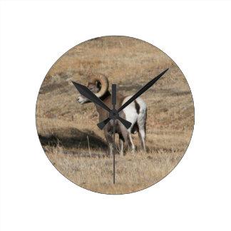 Big Horn Ram Round Wallclocks