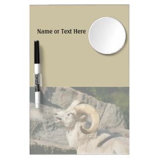 Big Horn Sheep Laughing Dry Erase Board With Mirror