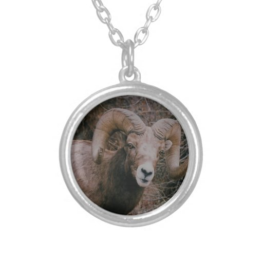Big Horn Sheep Round Pendant Necklace