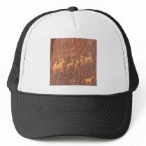 Big Horn Sheep Trucker Hat