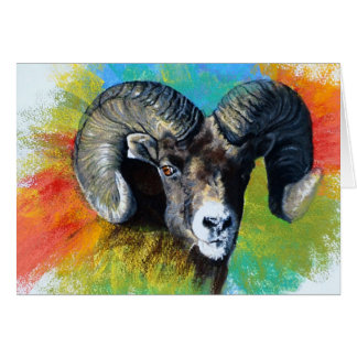 Big Horned Sheep Card