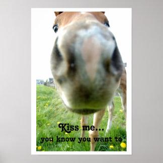 Big Horse Nose Kiss Me funny poster