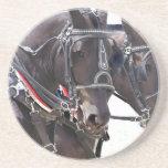 Big Horses Coaster
