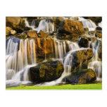 Big Island, Hawaii. Cascading stream, Big Island Postcard