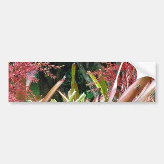Big Island of Hawaii Botanical Gardens Bumper Sticker
