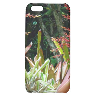 Big Island of Hawaii Botanical Gardens Case For iPhone 5C