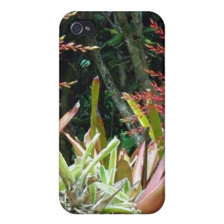 Big Island of Hawaii Botanical Gardens iPhone 4/4S Covers