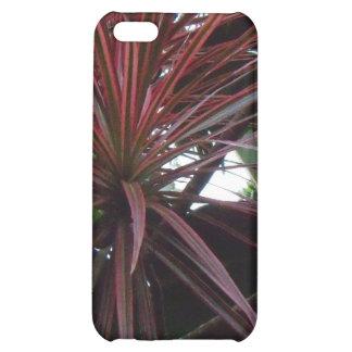 Big Islands of Hawaii Botanical Gardens iPhone 5C Case