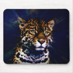 Big Kitty Mouse Pad