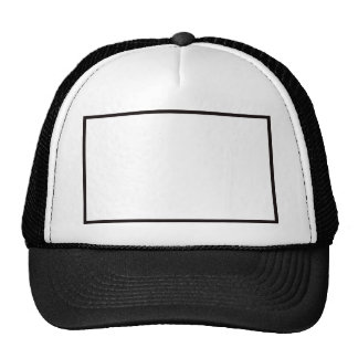 BIG LEAGUE CHEW HAT