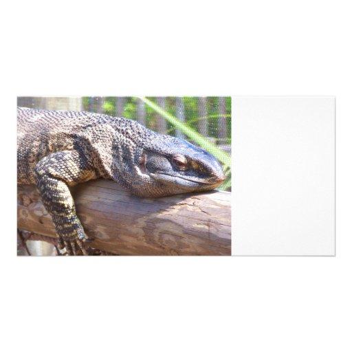 big lizard on log close up photo card