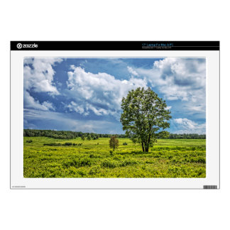 """Big Meadows Decal For 17"""" Laptop"""