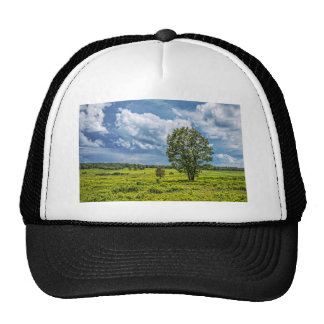 Big Meadows Trucker Hat