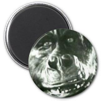 Big Monkey Face Magnet