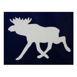 Big moose postcard