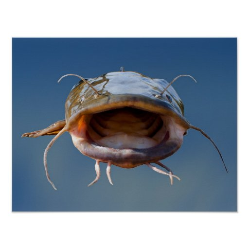 Big mouth fishing poster zazzle for Big mouth fish