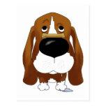 Big Nose Basset Hound Post Cards