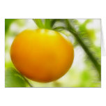 Big Orange Heirloom Tomato Greeting Card