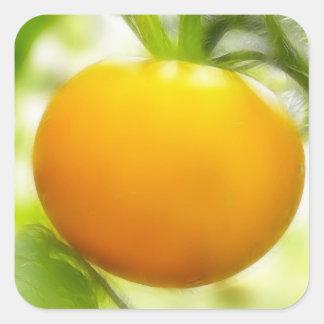 Big Orange Heirloom Tomato Square Sticker
