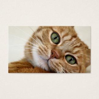 Big Orange Kitty Business Card