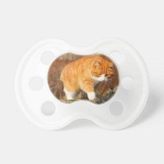 Big Orange Tom Cat on the Prowl Pacifier
