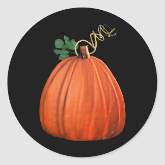 Big Orange Whimsical Pumpkin Classic Round Sticker