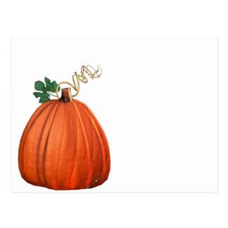 Big Orange Whimsical Pumpkin Postcard