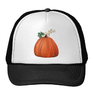 Big Orange Whimsical Pumpkin Trucker Hat