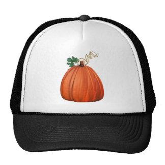 Big Orange Whimsical Pumpkin Trucker Hat