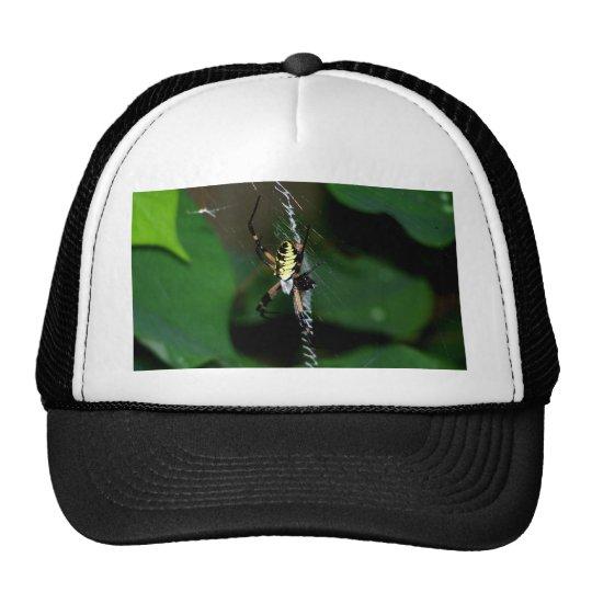 Big Orb Weaver Spider Trucker Hat