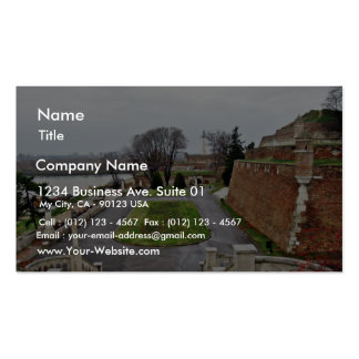 Big Park Kalemegdan By Danube River Serbia Double-Sided Standard Business Cards (Pack Of 100)