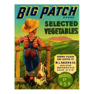 Big Patch Postcards