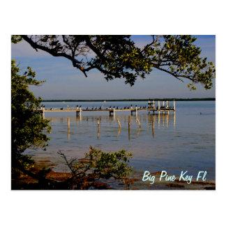 Big Pine Key Bird Dock Postcard