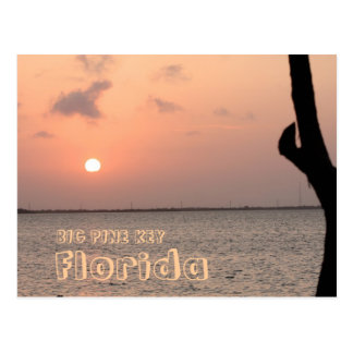 Big Pine Key Florida Postcard