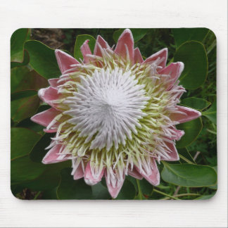 Big Pink and White Flower Mousepad