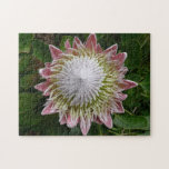 Big Pink and White Flower Nature Floral Jigsaw Puzzle