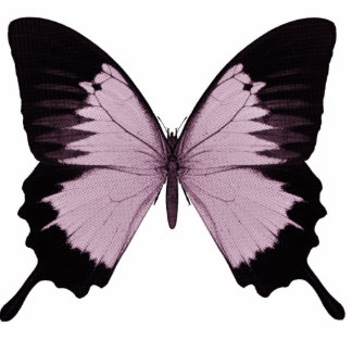 Big Pink & Black Butterfly - Personalize Standing Photo Sculpture