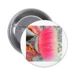 big-pink-gum-blossom_1